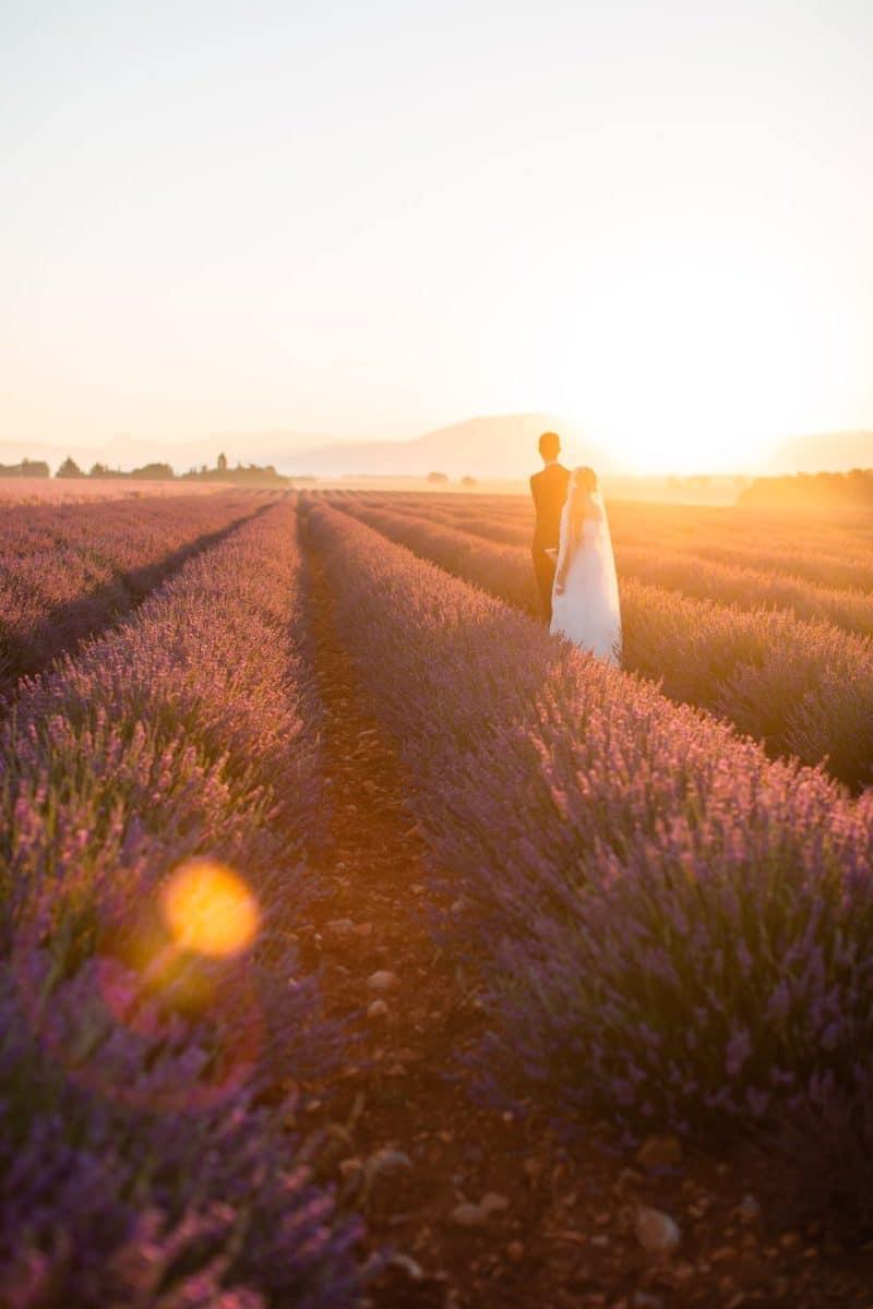 couple qui marche dans la lavande couché de soleil