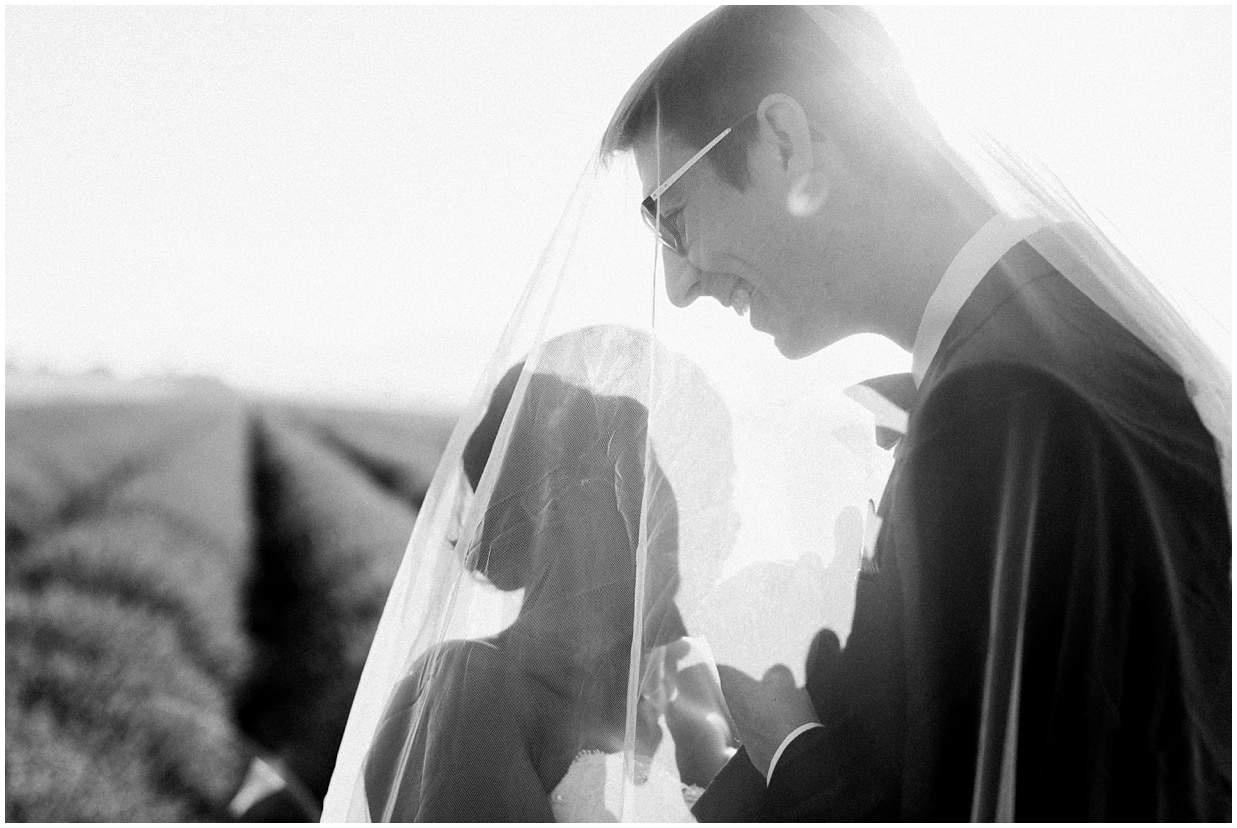 Lavender fields, shooting couple, love session, black and white photography