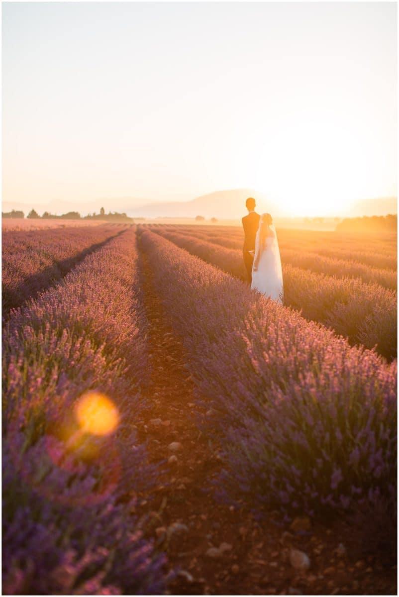 Lavender fields, shooting couple, sunrise