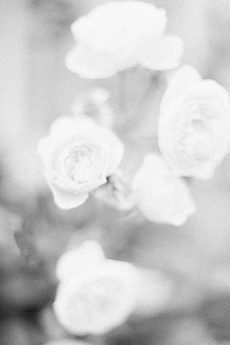fleurs en noir et blanc